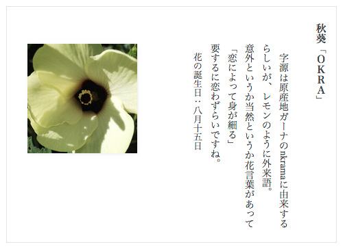 縦書きGoogleChorome